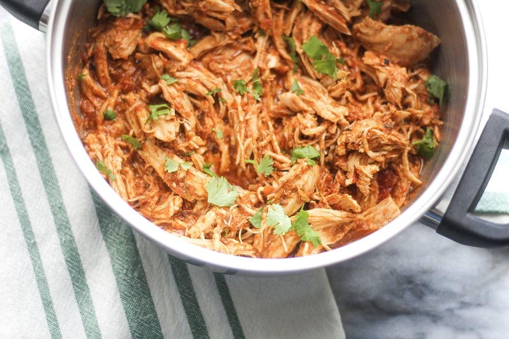 Five Ingredient Salsa Chicken